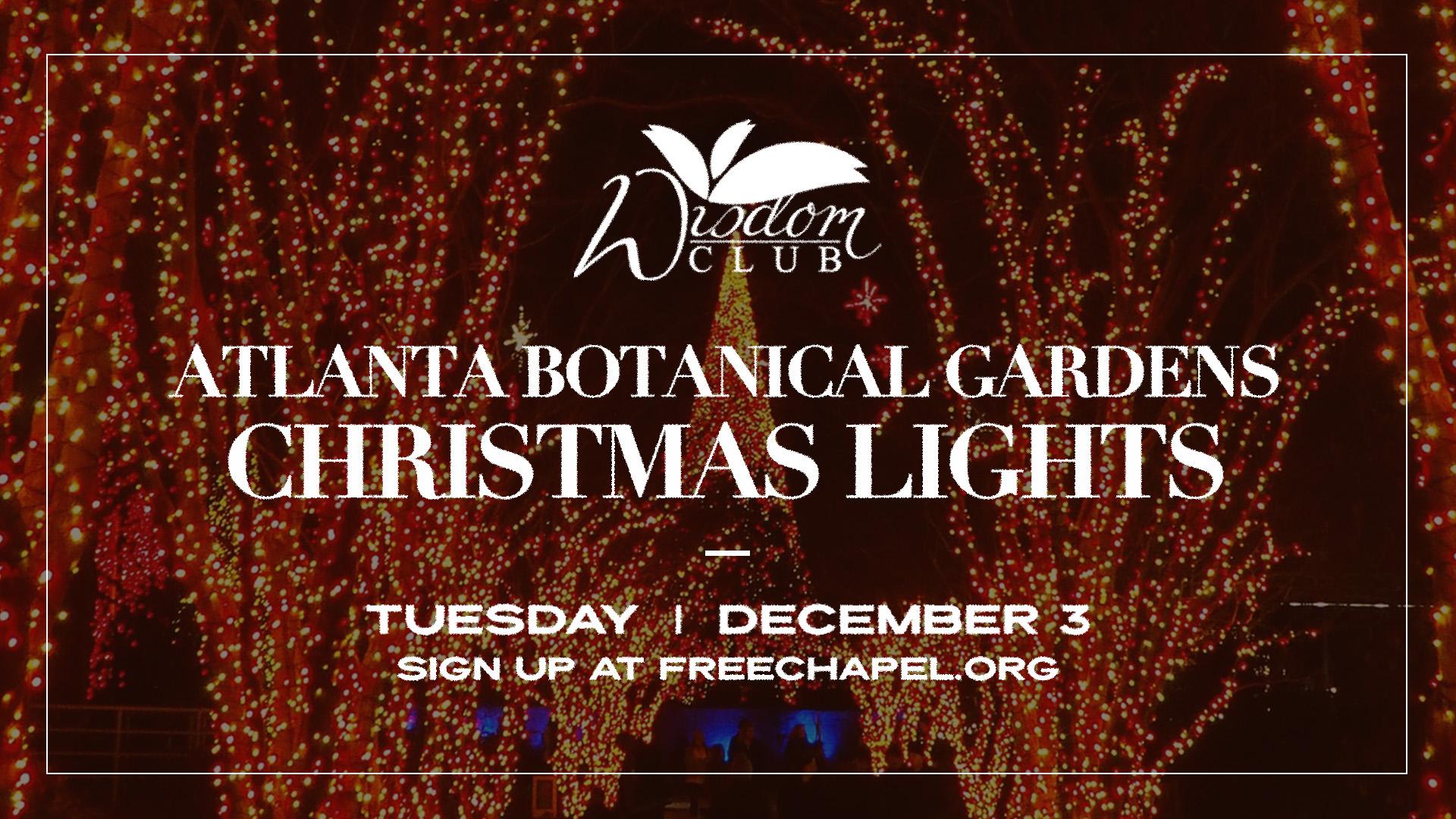 Wisdom Club Atlanta Botanical Gardens Christmas Lights at the Gainesville campus